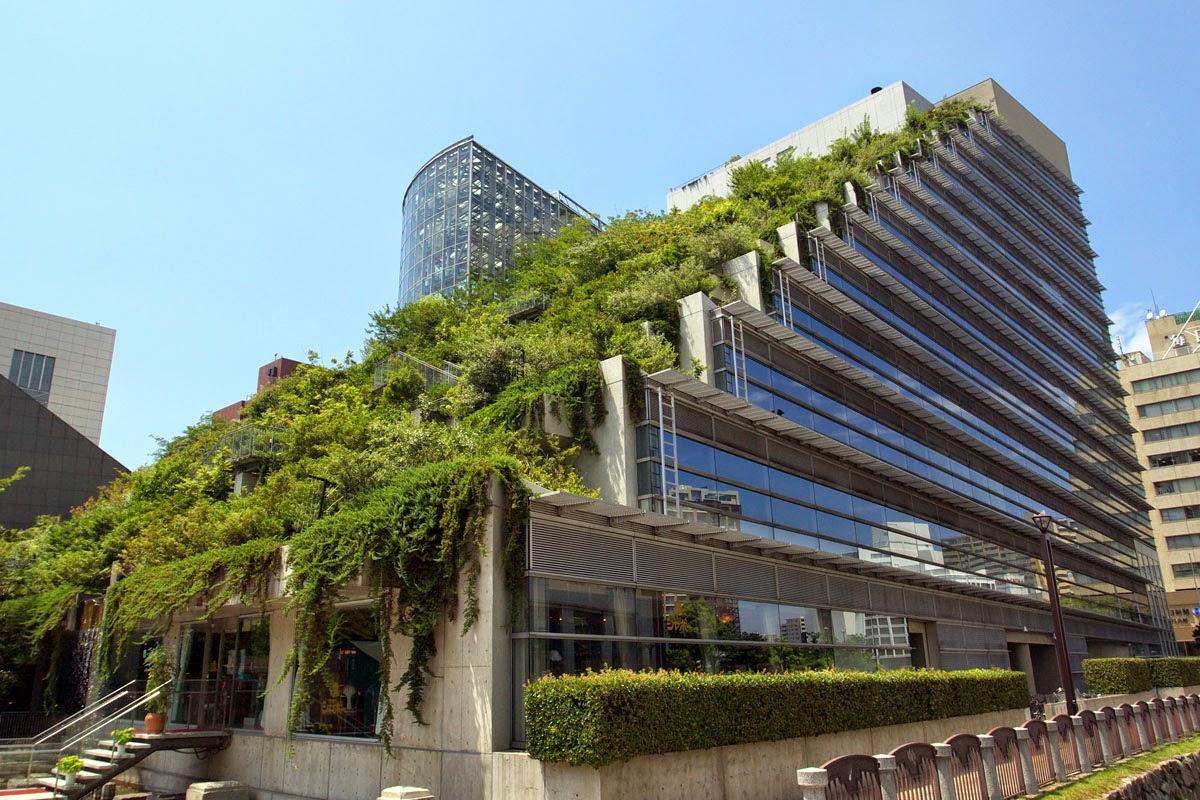 Environnement et energie bient t des toits v g talis s for Muros verdes arquitectura
