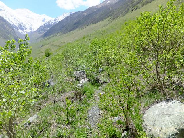 тропинка к леднику, вдоль ущелья Кармадонское