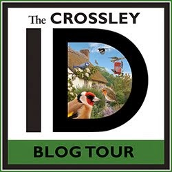 THE BLOG TOUR