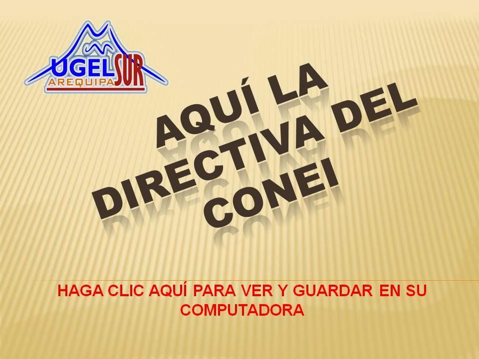 DIRECTIVA DEL CONEI