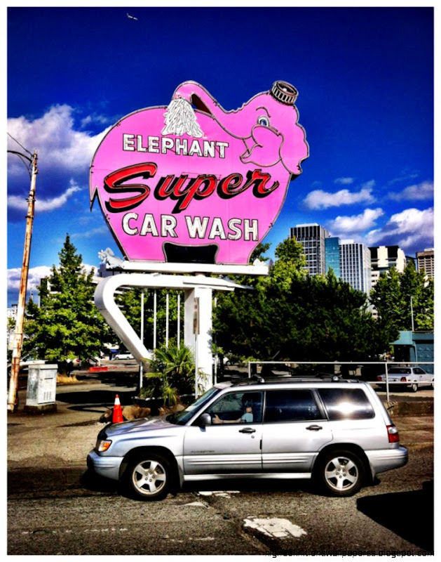 Elephant Car Wash Wallpaper Hd High Definitions Wallpapers