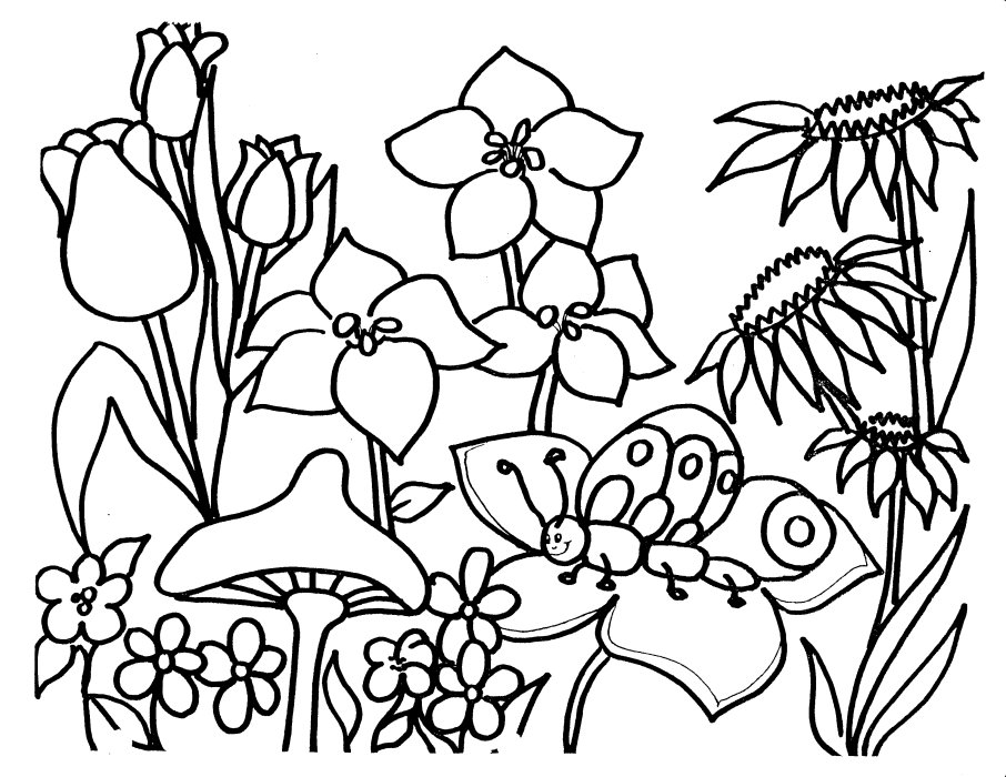 garden coloring page coloring pages for kids flower garden coloring pages for kids