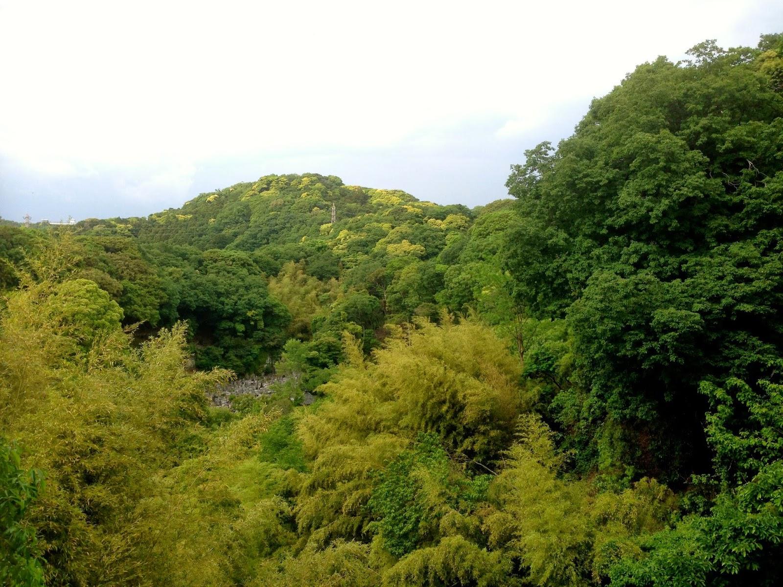 瑞泉寺 天台山