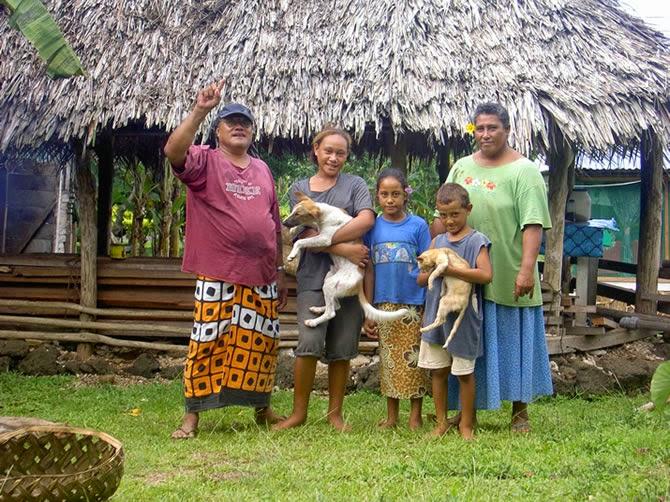 American Samoa - fattest people ranked 1st
