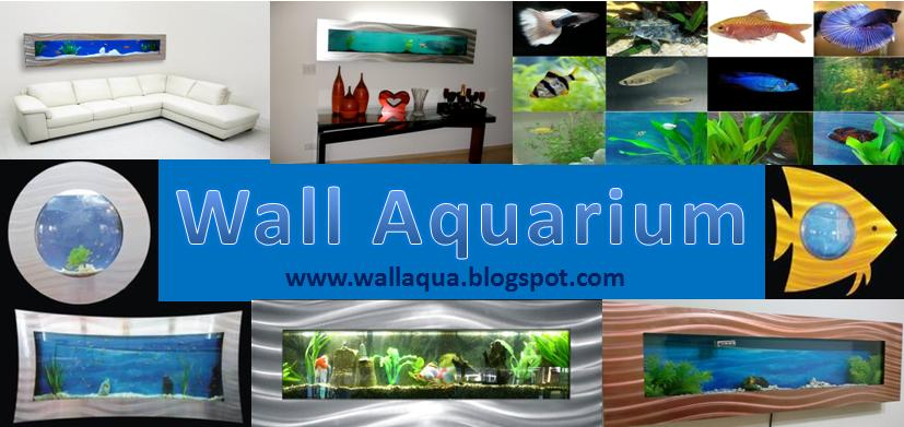 Wall Aquarium at Home