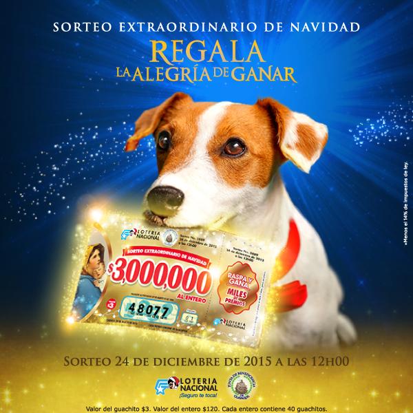 loteria de navidad noticias: