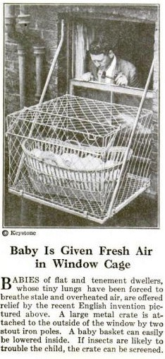 The Cupcake Life How Many Baby Cages Will I Need
