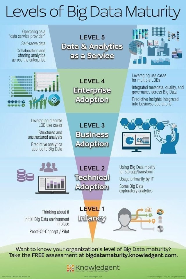Level of big data maturity