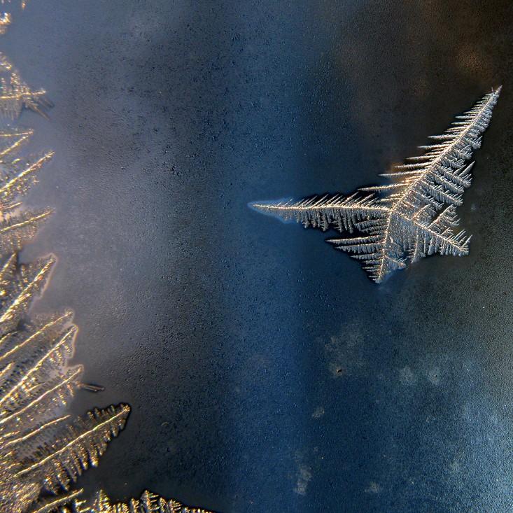 Sommerfugl som iskrystaller på vindue