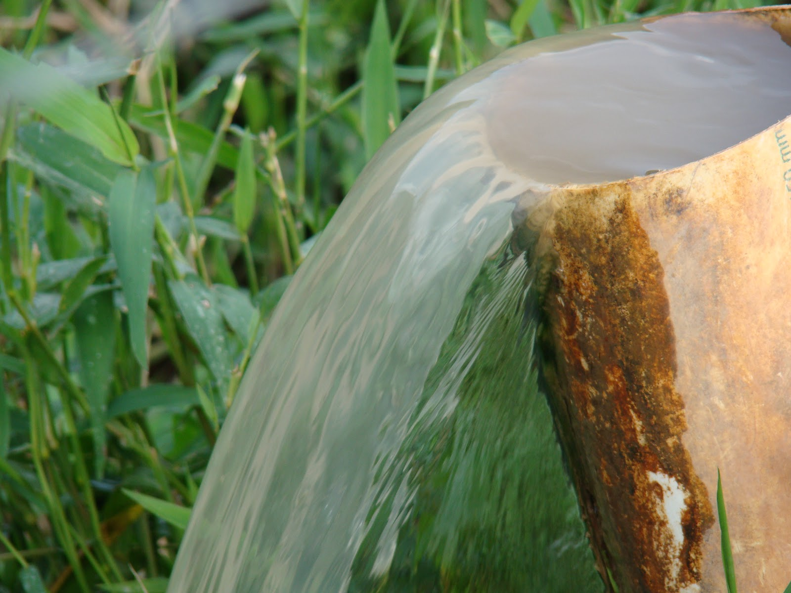 Bastante água LIMPA com açudes onde pode ser desenvolvida a  #6B431C 1600x1200 Balança Banheiro Boa