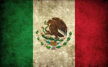 Mexicanos perdidos en México (2016)