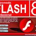 Download Macromedia Flash 8 Gratis Full Version