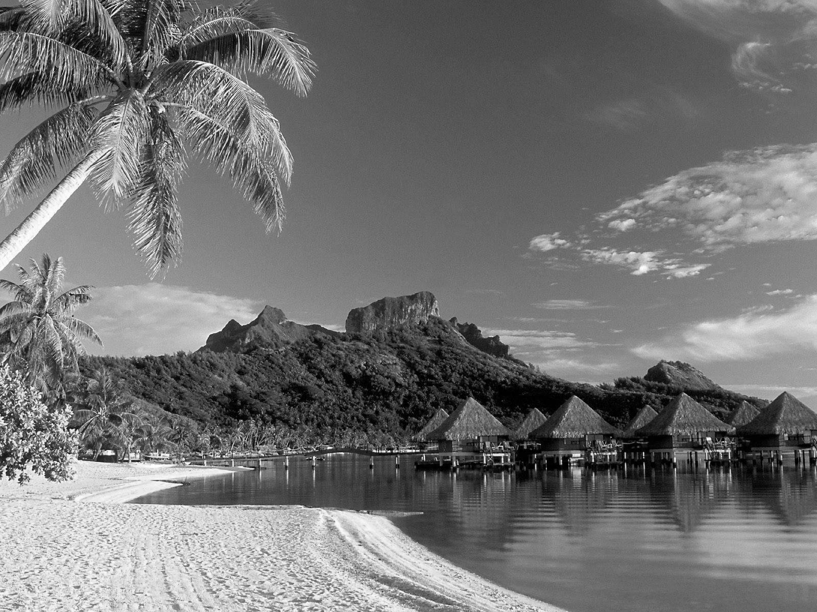 Black and White Wallpapers: Black and White Beach
