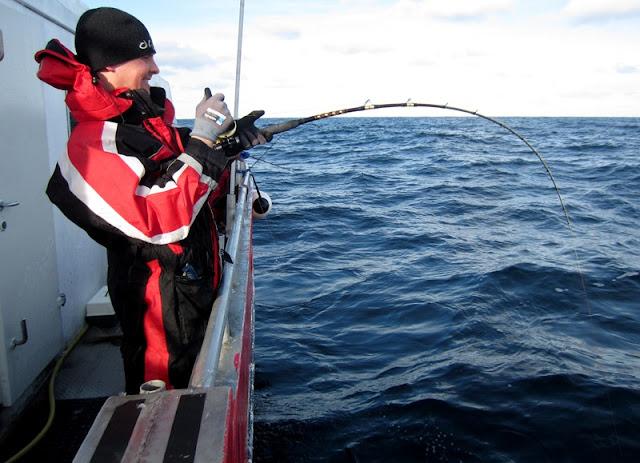 IMG_1251-stig+thore+kj%C3%B8rer+fisk.jpg