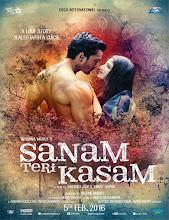 Sanam Teri Kasam (2016)