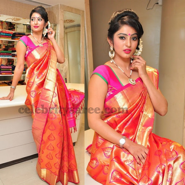 Vaibhavi Traditional Saree