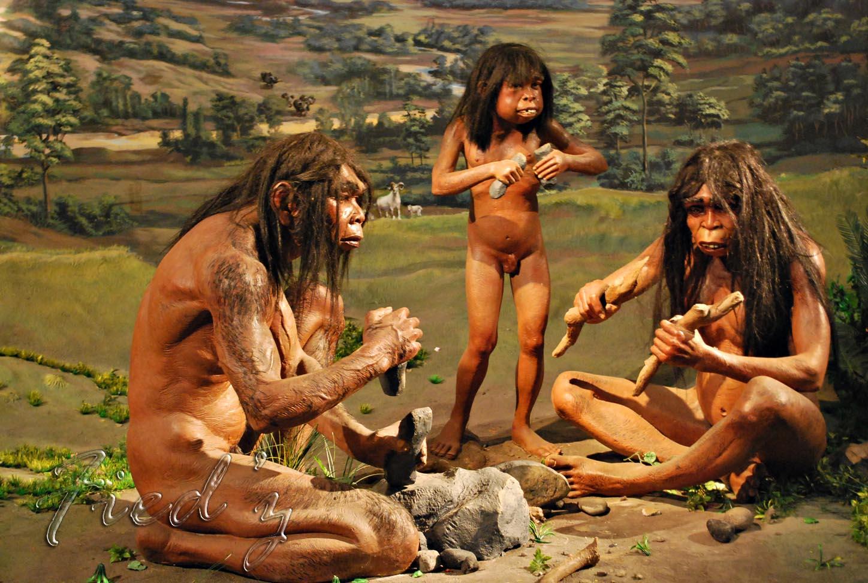 Zaman Prasejarah Kehidupan Manusia Purba