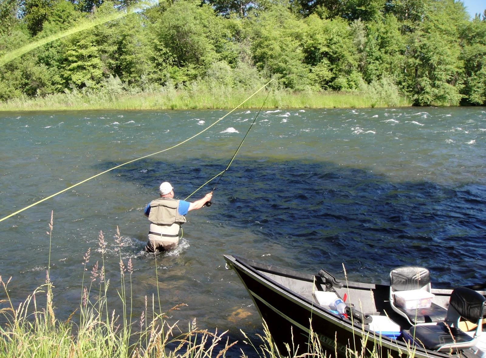 Fly fishing for summer steelhead rogue river fishing for Rogue river fishing report
