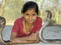 Kajol Khan, Gadis 11 Tahun yang Hidup dengan King Kobra