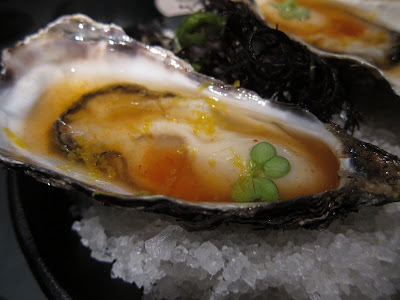 More Oysters at 41 Degrees