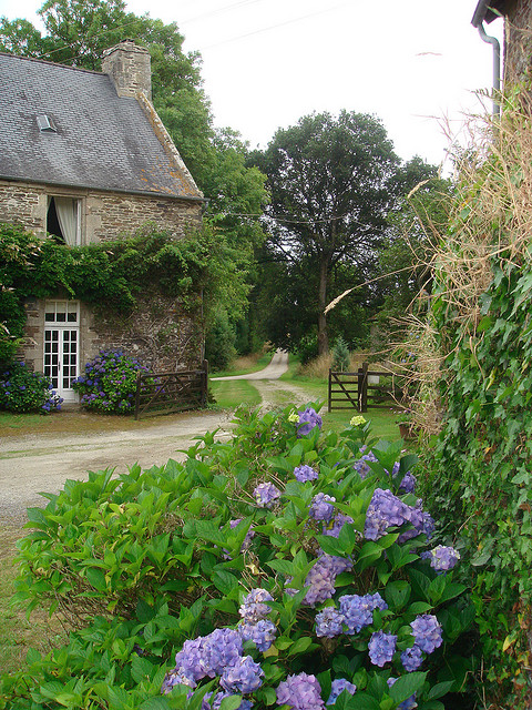 A joyful cottage french cottages for French country cottages