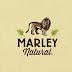 Primeira marca multinacional de maconha terá o nome de Bob Marley