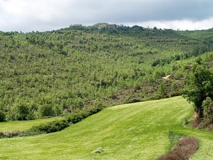 El Santuari del Miracle des de l'altra banda de la Vall de la Rasa de L'Estany