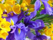 Ti dico quello che vedo Mamma, la primavera con i suoi fiori, i più belli, . (foto fiori mamma)