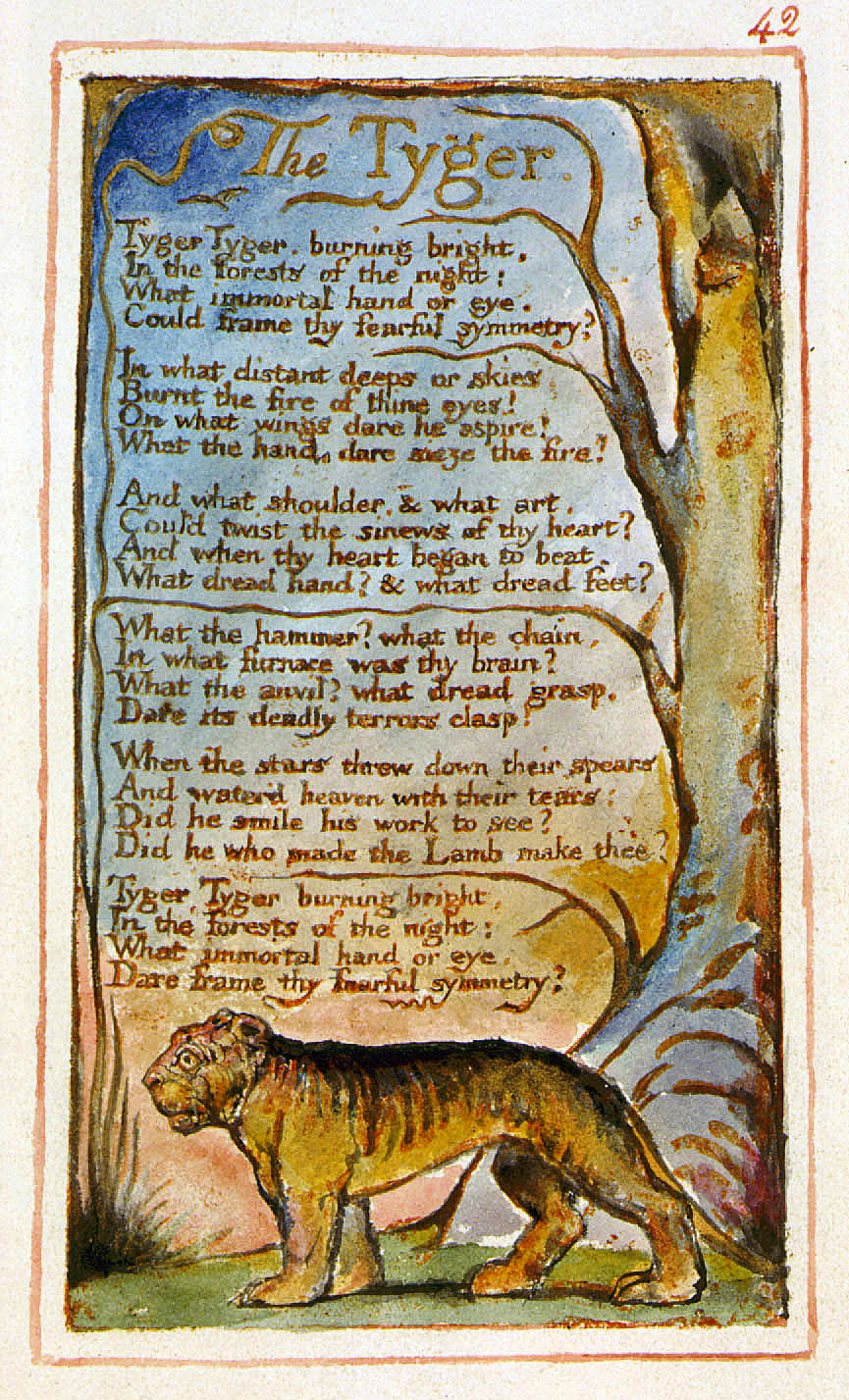 the perfect poem of william blake Buy the complete poems (penguin classics) by william blake, alicia ostriker ( isbn: 8601404320088) from  also check our best rated biography reviews.
