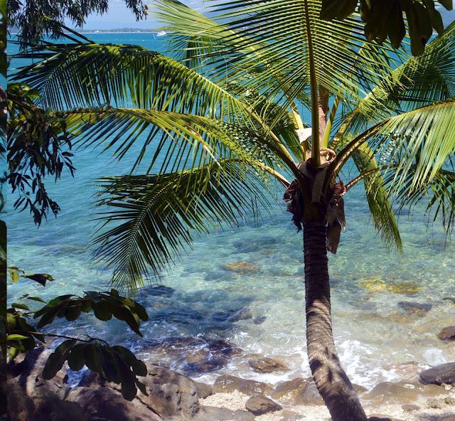 Dunk island beach