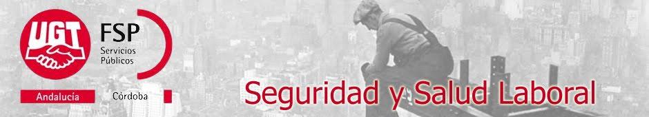 SEGURIDAD Y SALUD LABORAL  FSP/UGT. CÓRDOBA