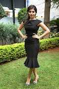 Samantha latest photos in black-thumbnail-18