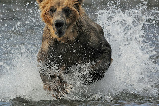 Barrett Hedges National Geographic photo