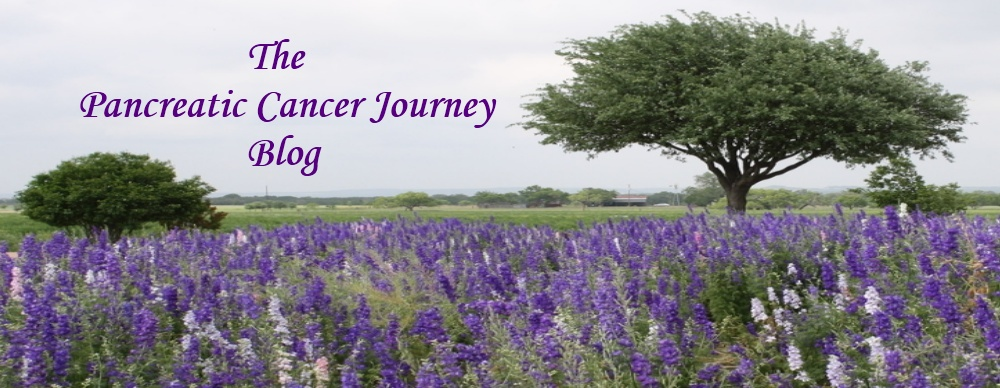 The Pancreatic Cancer Journey