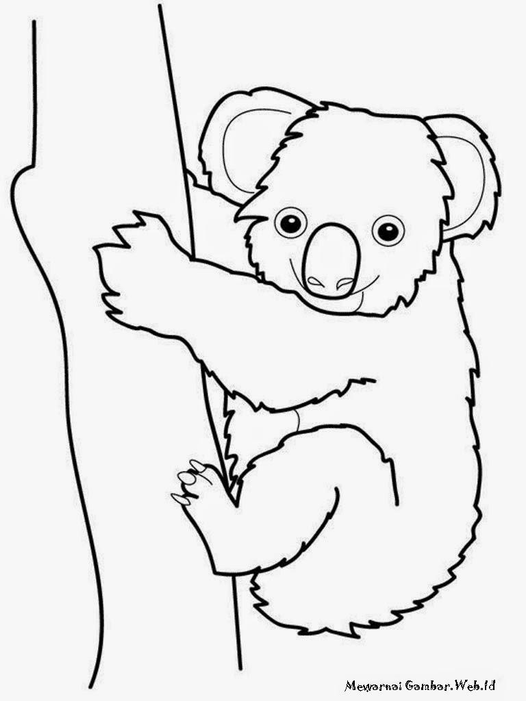 Gambar Koala Memanjat Pohon Untuk Mewarnai