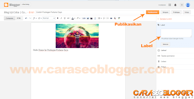 Cara Posting di Blog Blogger / Blogspot - 5