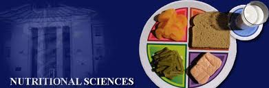 Nutritional Science: Super Foods