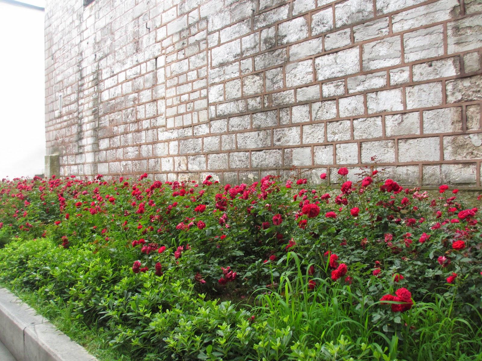 Travel Umroh Plus Istanbul Terbaik Bagus dan Terpercaya