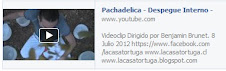 Videoclip Pachadelica