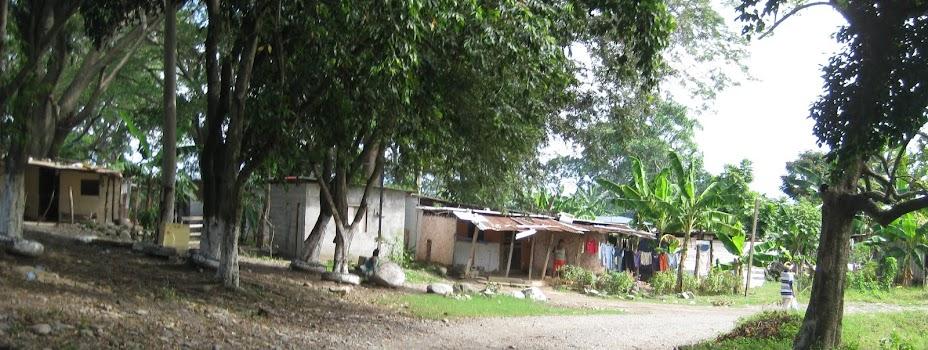 Troxells in Honduras