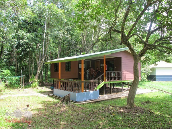 Forest Lodge Type 4 at Bako NP - WireBliss