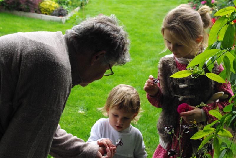 Nastiya le jardin des roses saint yrieix rendez vous for Entretien jardin angouleme