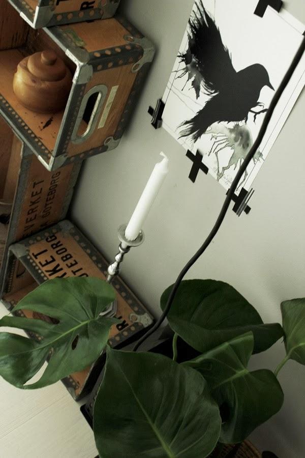 monstera, grön växt, trälådor, ,ådor mot vägg, artprint fågel, svart fågel, tavla i svart och vitt, svartvitt motiv, illustration fågel, konsttryck svart fågel, grå vägg, sätta hyllor mot väggen med inredningsdetaljer, televerket lådor, inredning arbetsrum, ateljé, vit parkett