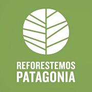 Reforestemos Patagonia con 1 millón de árboles