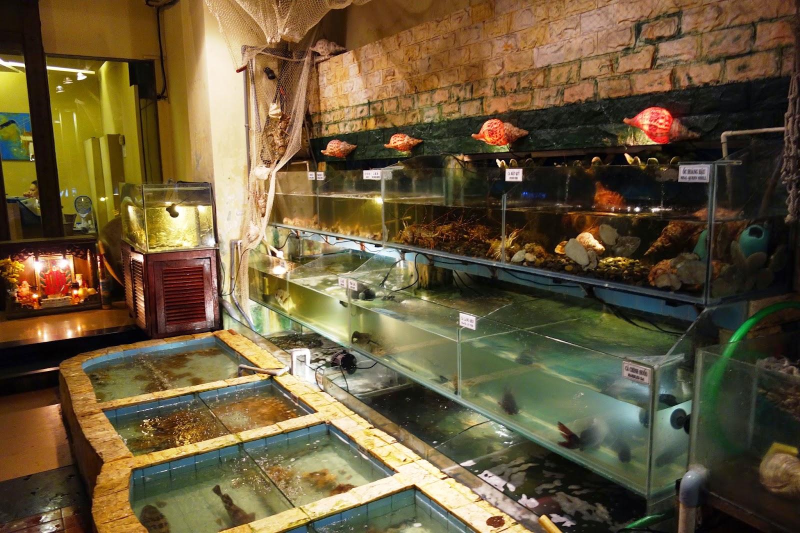 Grouper Fish Restaurant Reading
