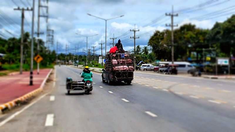 Transport Schweine Thailand