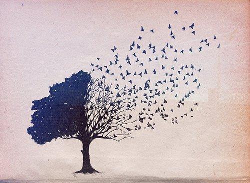 Como o adeus nos enfraquece depois da regressão do amor em sonho…