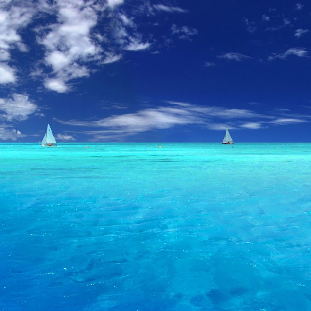 iPad Wallpaper - Blue Paradise