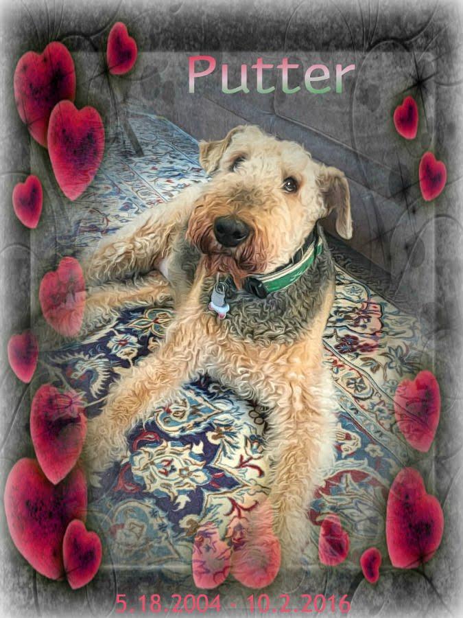 Sweet Putter