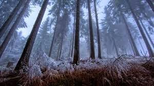 beköszöntött a tél